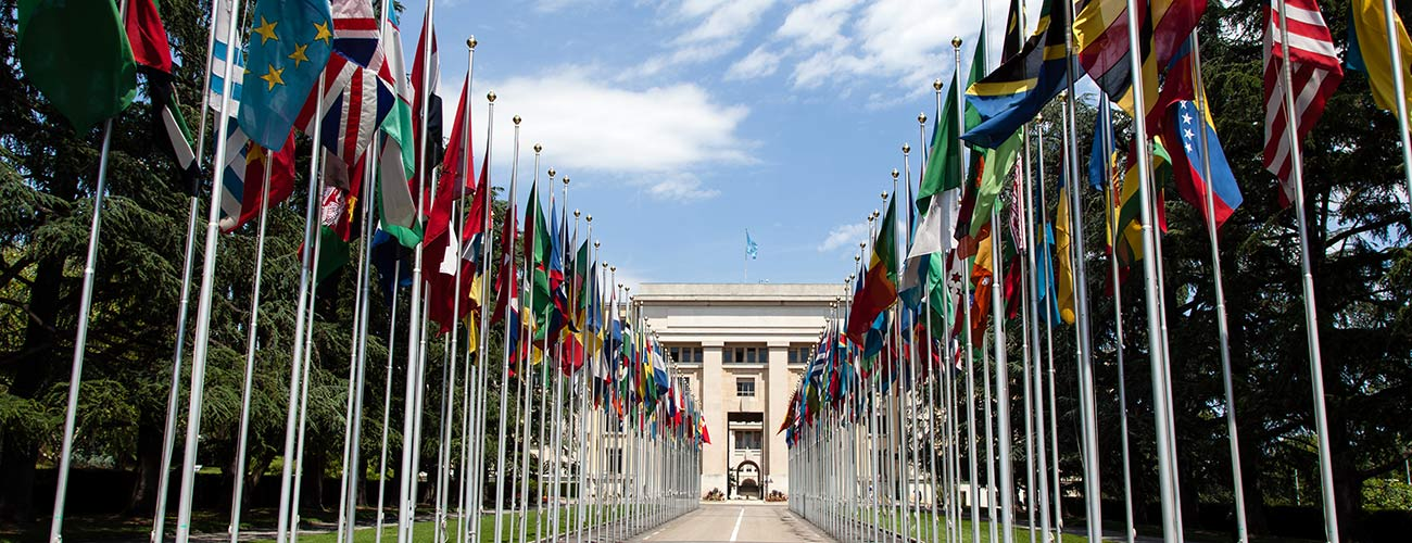 United_Nations_Flags